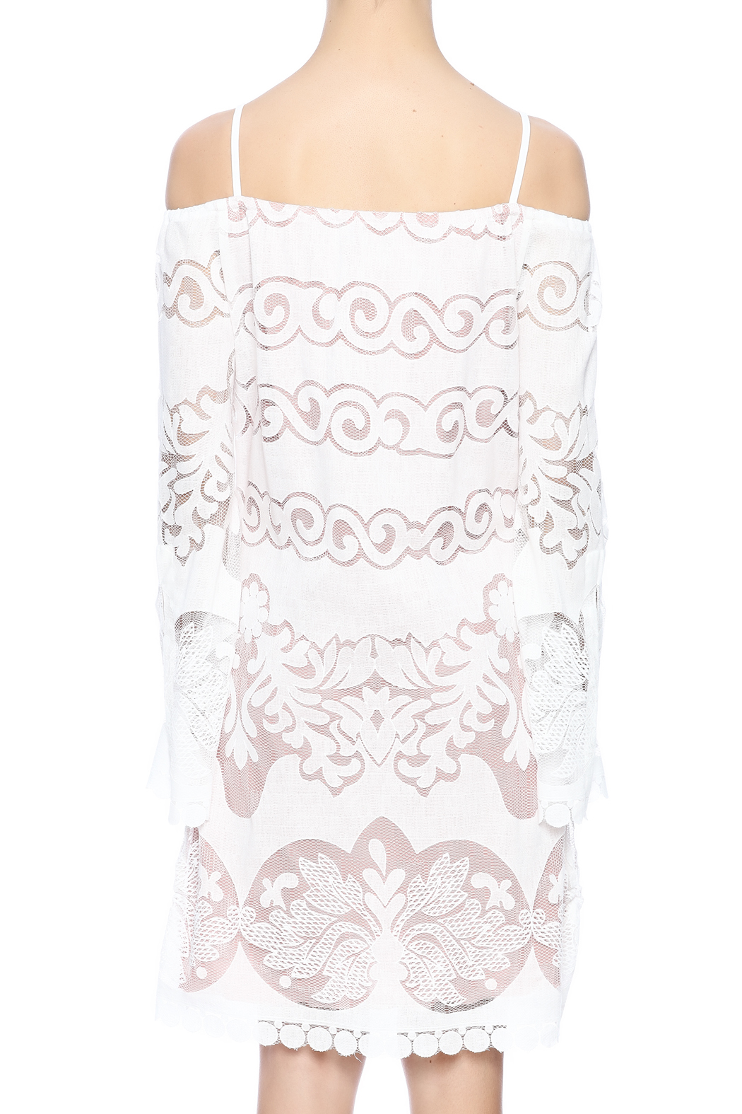 Union of Angels White Lace Dress - Back Cropped Image