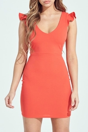 ALB Anchorage Up Close Mini-Dress - Front cropped