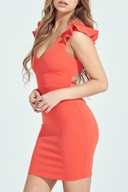 ALB Anchorage Up Close Mini-Dress - Side cropped