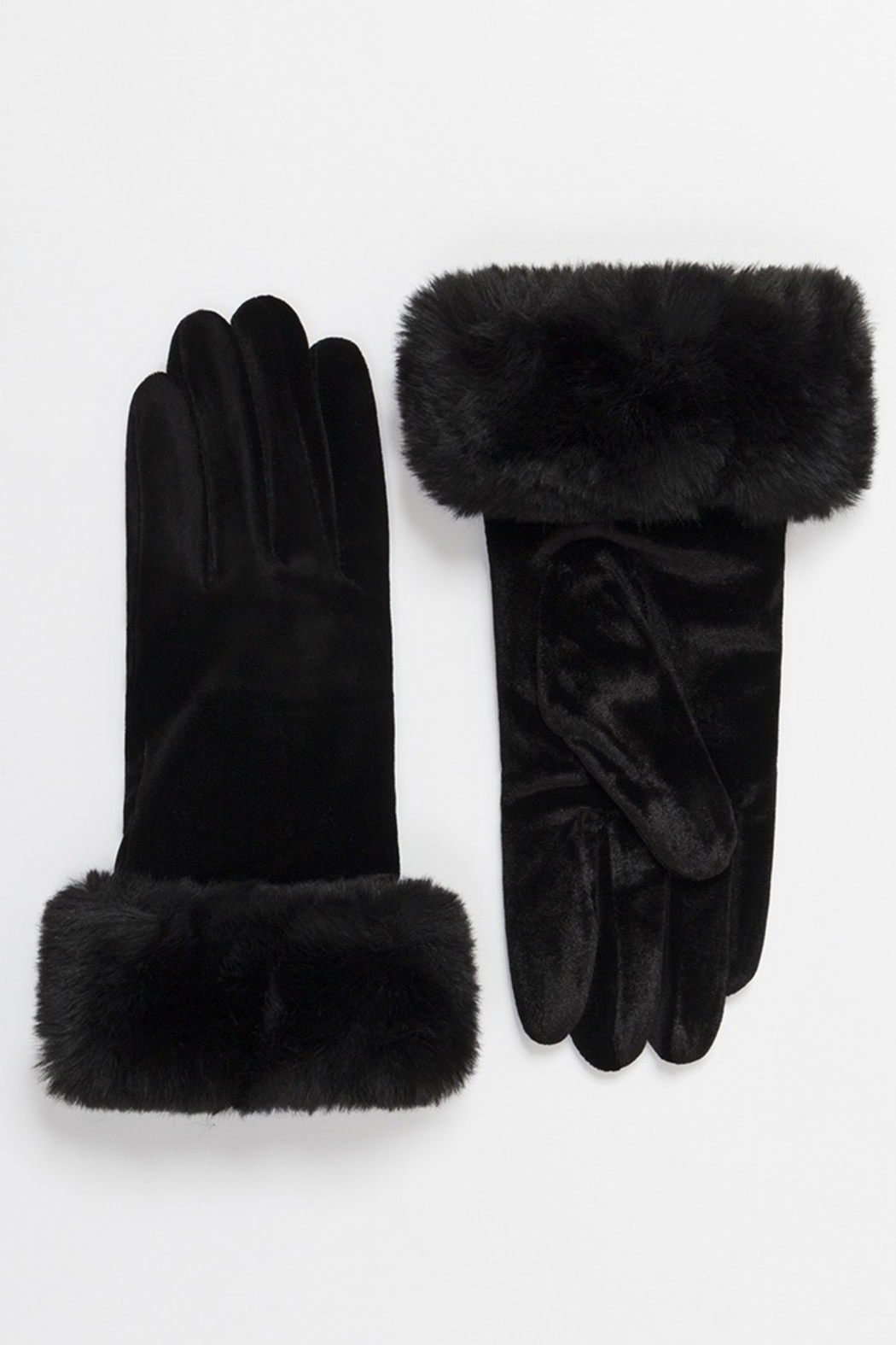 Pia Rossini Valentina Gloves - Front Cropped Image