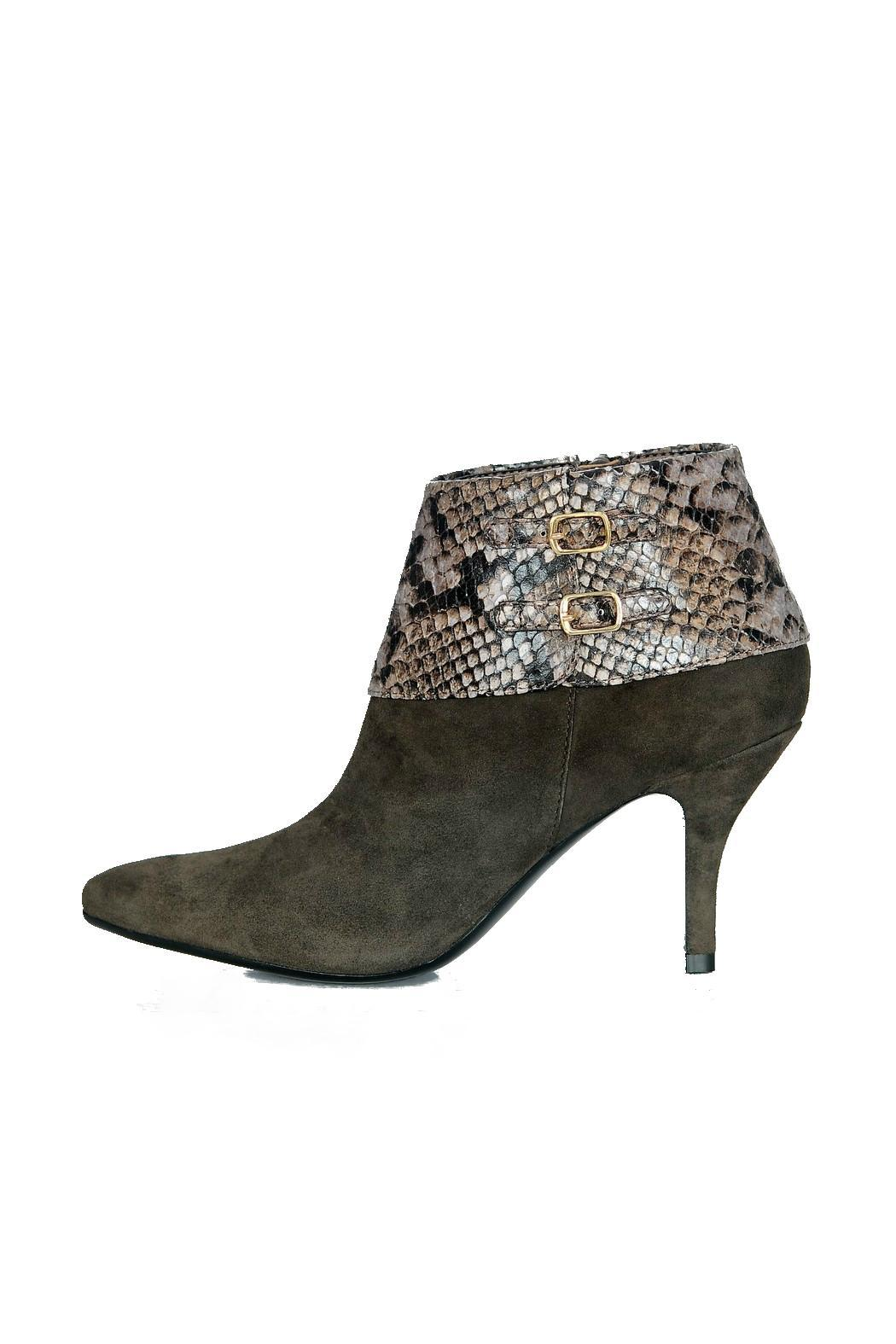 vaneli high heel bootie from florida by shoes by beverly