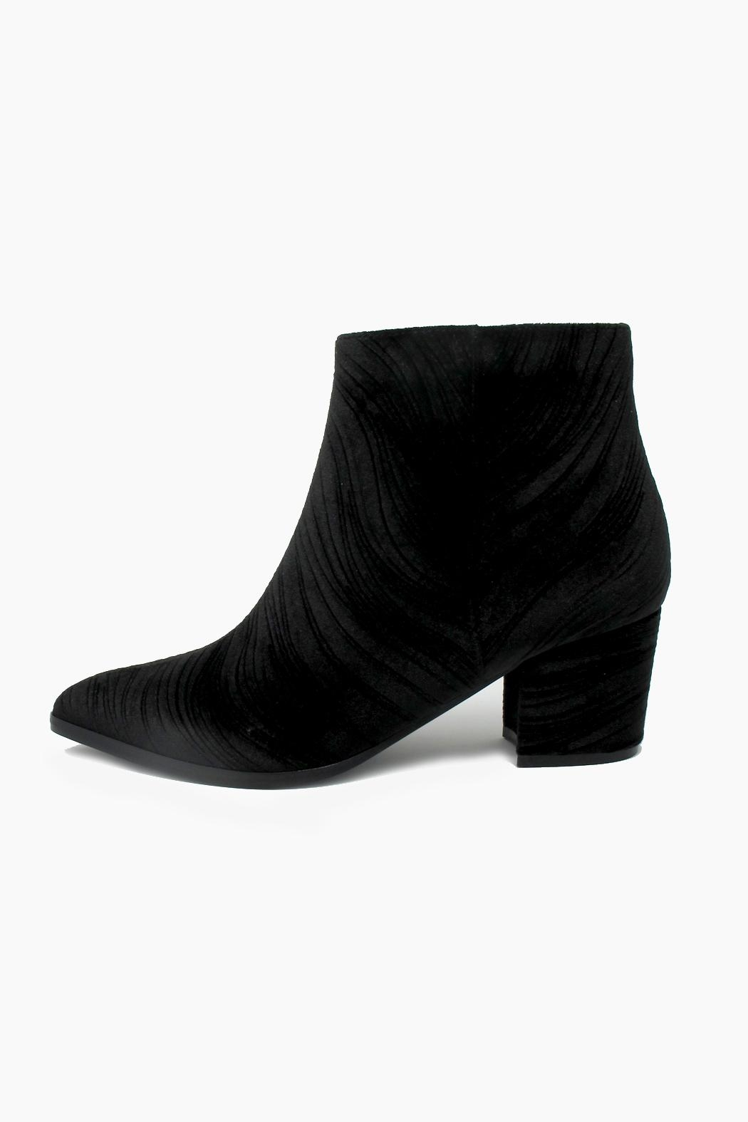 fbc4aef131 Vaneli Velvet Textured Booties from South Carolina by Baehr Feet ...
