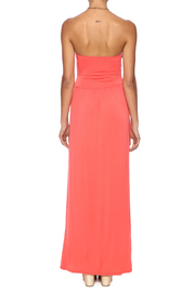 vanilla bay Rebecca Maxi Dress - Back cropped