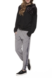 Dex Velour Stripe Jogger - Product Mini Image