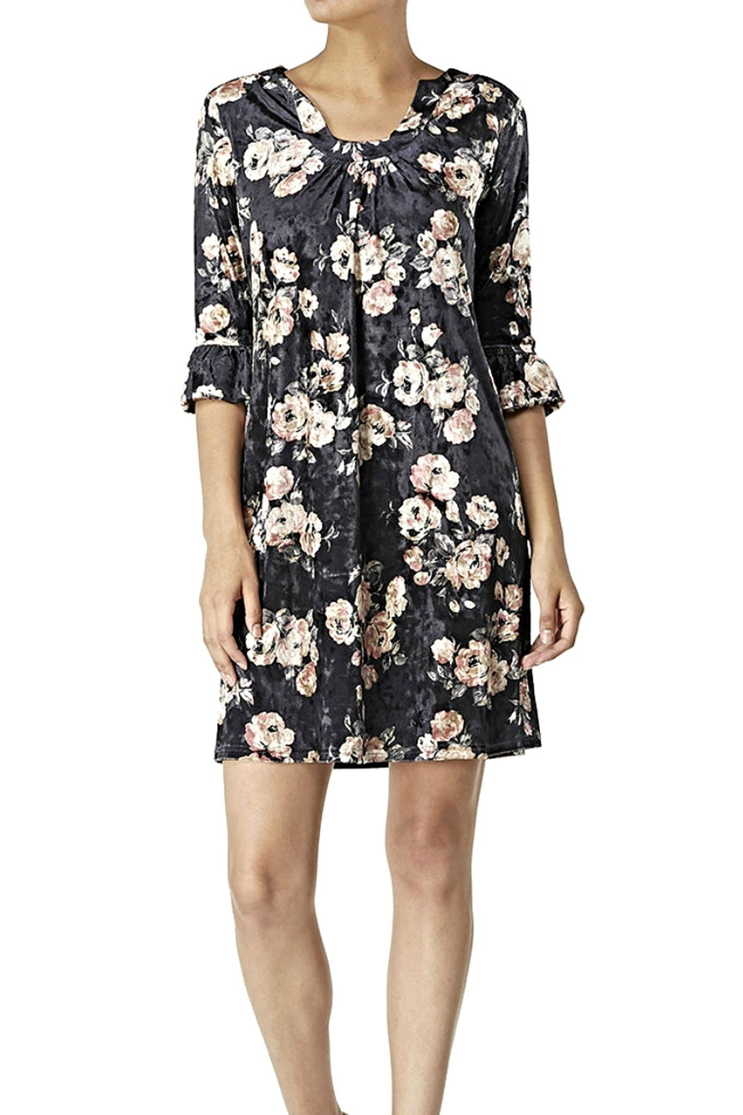 Aryeh Velvet Floral Dress - Front Cropped Image