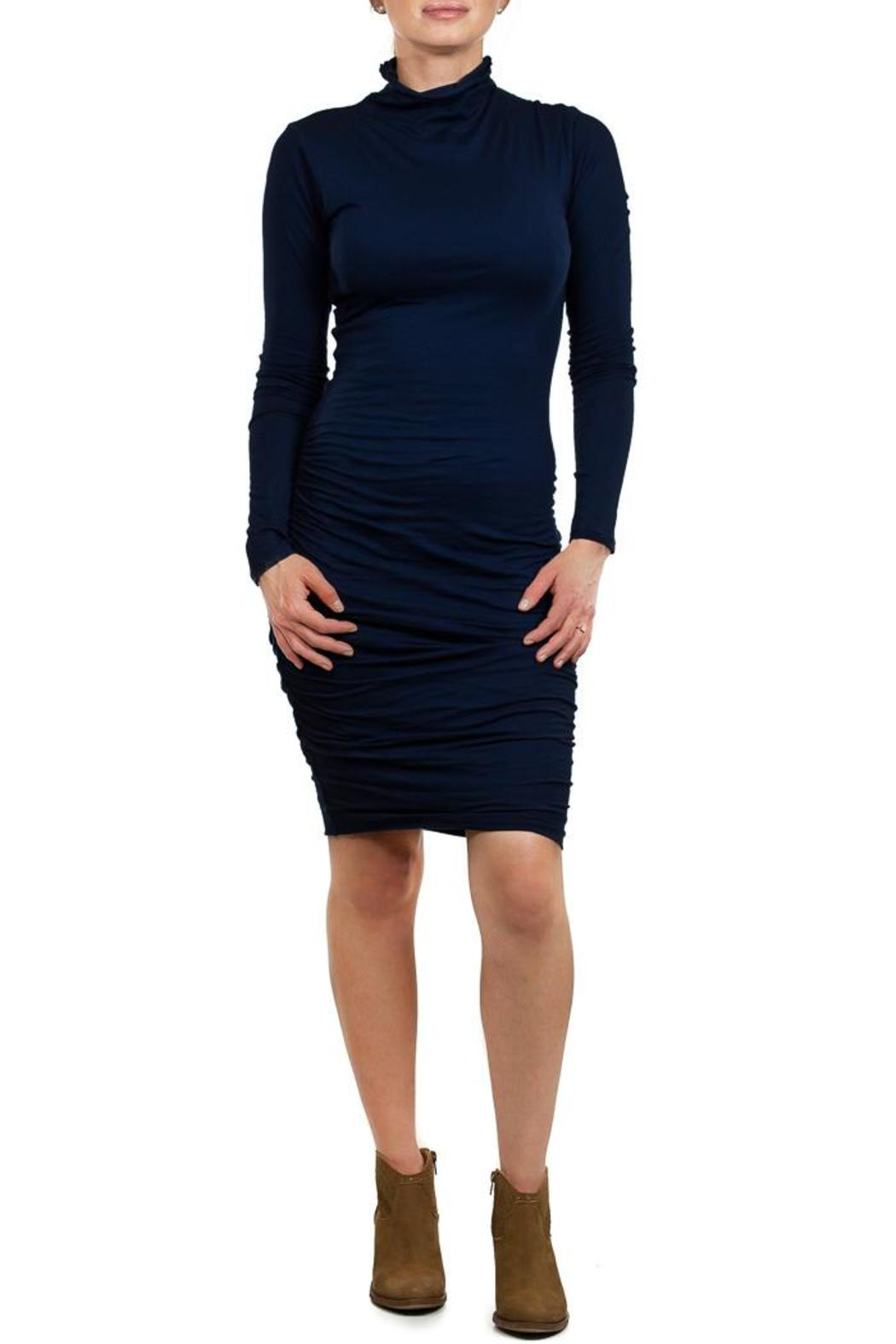Velvet Pietro Turtleneck Dress - Main Image