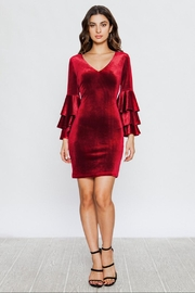 Jealous Tomato Velvet Ruffle Dress - Product Mini Image