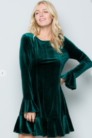 See and Be Seen Velvet Ruffle Dress - Product Mini Image
