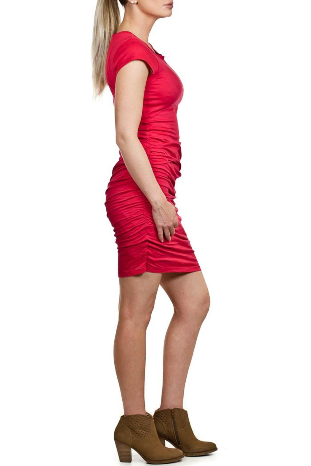 Velvet Red Mini Dress - Front Full Image