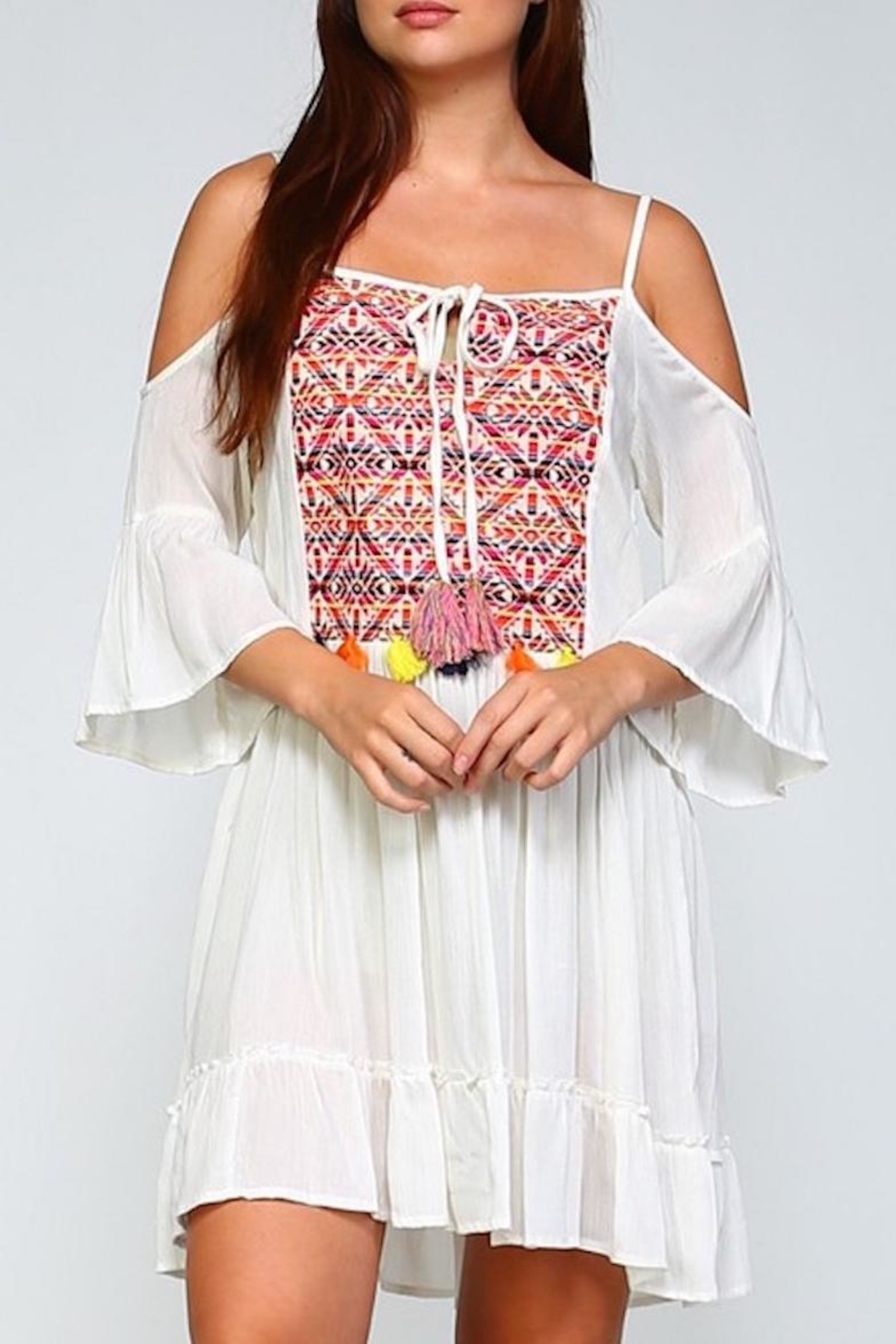 Velzera Embroidered Dress - Front Cropped Image