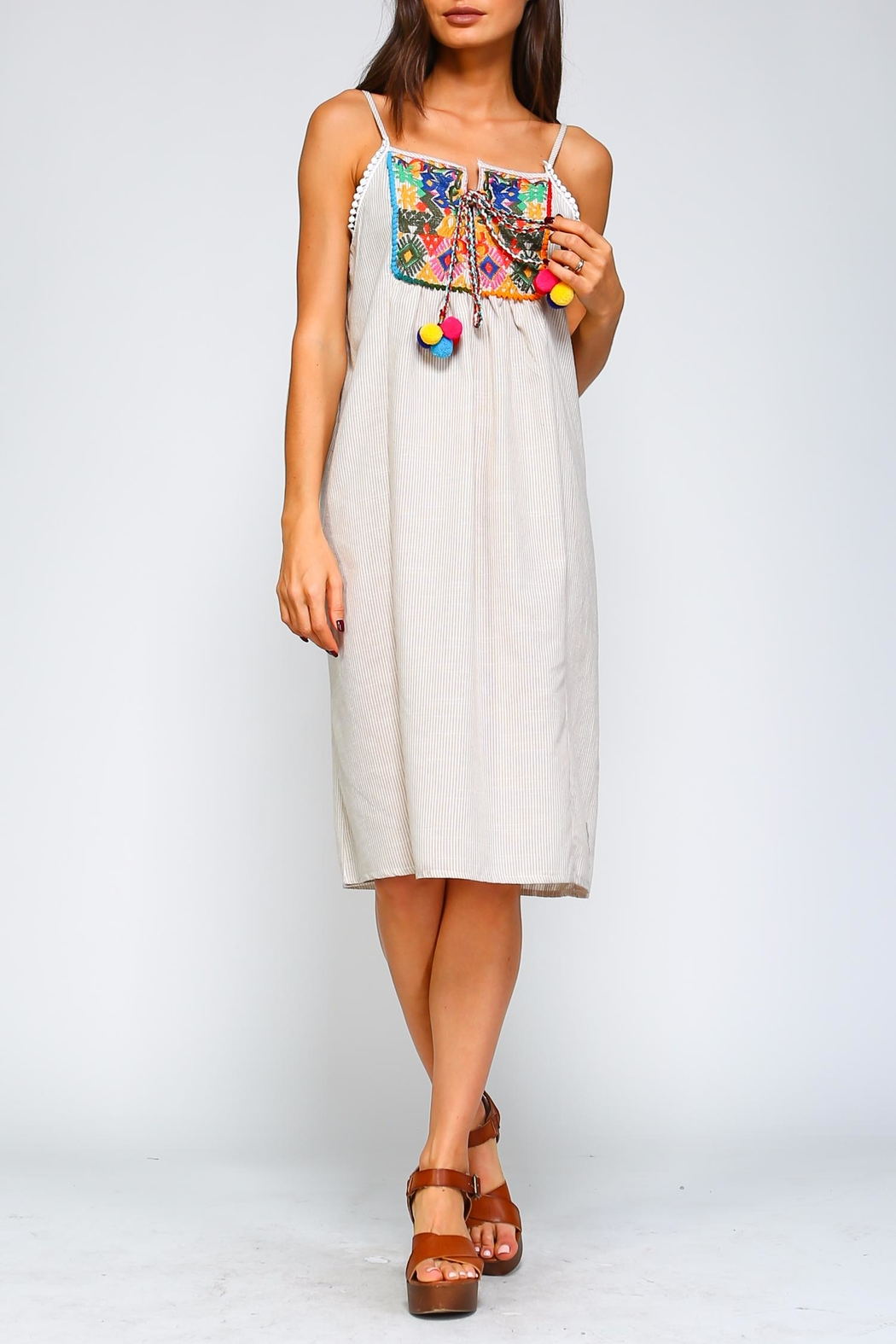 Velzera Embroidered Pom-Pom Dress - Front Cropped Image