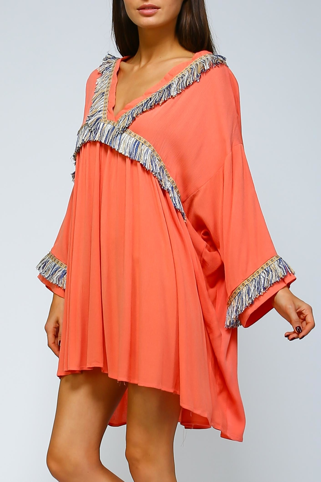 Velzera Fringe Shift Dress - Front Full Image
