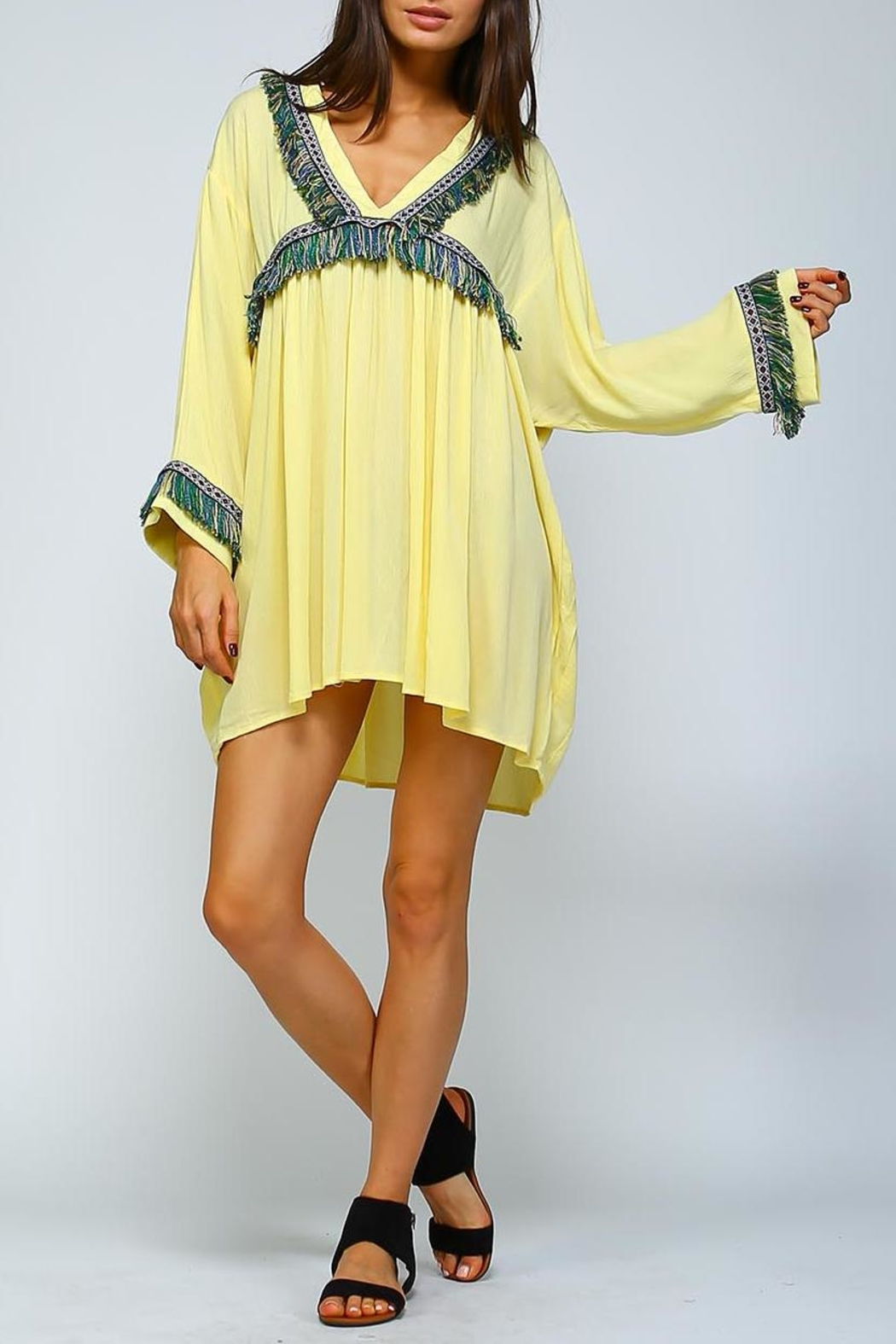 Velzera Fringe Shift Dress - Front Cropped Image