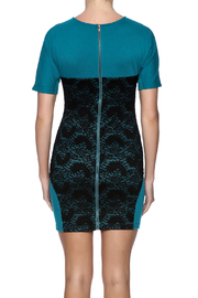 Verty Lace Front Mini - Back cropped