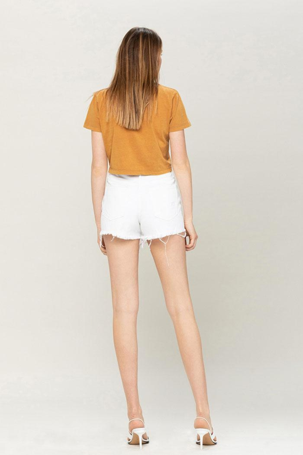 Vervet High-Rise Distressed Shorts - Back Cropped Image