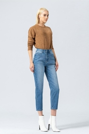 Vervet High-Waisted Mom Jeans - Side cropped