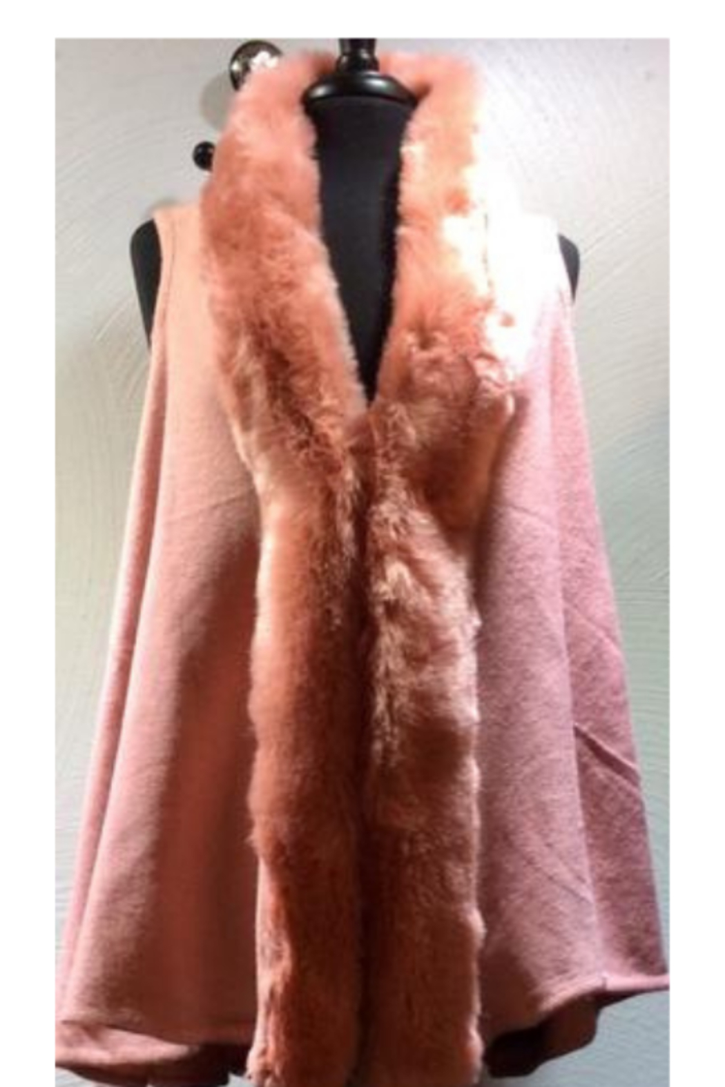 Fadiva Vest-Knit vest with faux fur collar - Front Cropped Image