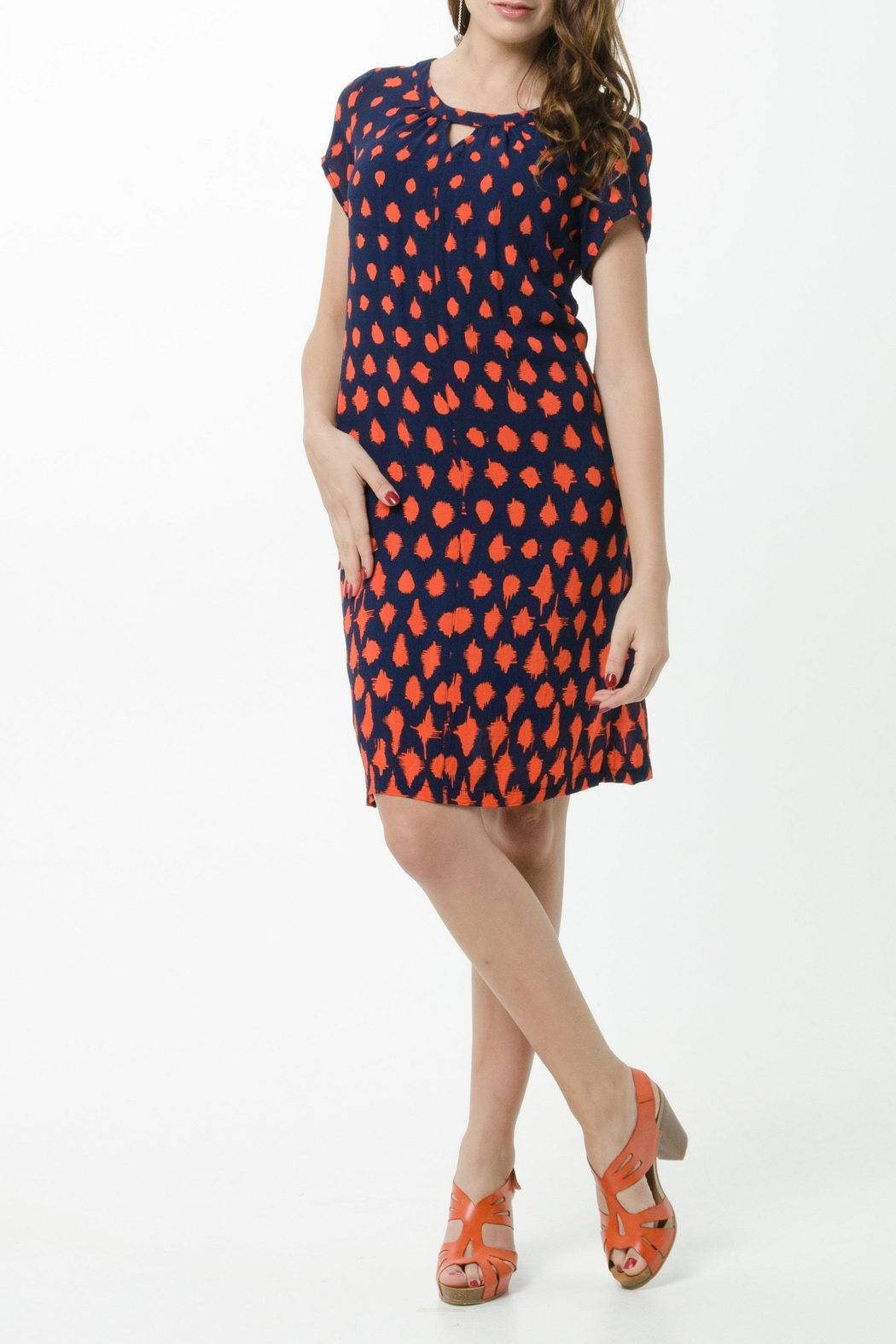 Vesta Meteor Peking Dress - Front Full Image