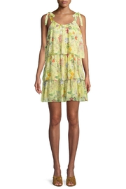 Parker Vicky Floral Dress - Product Mini Image