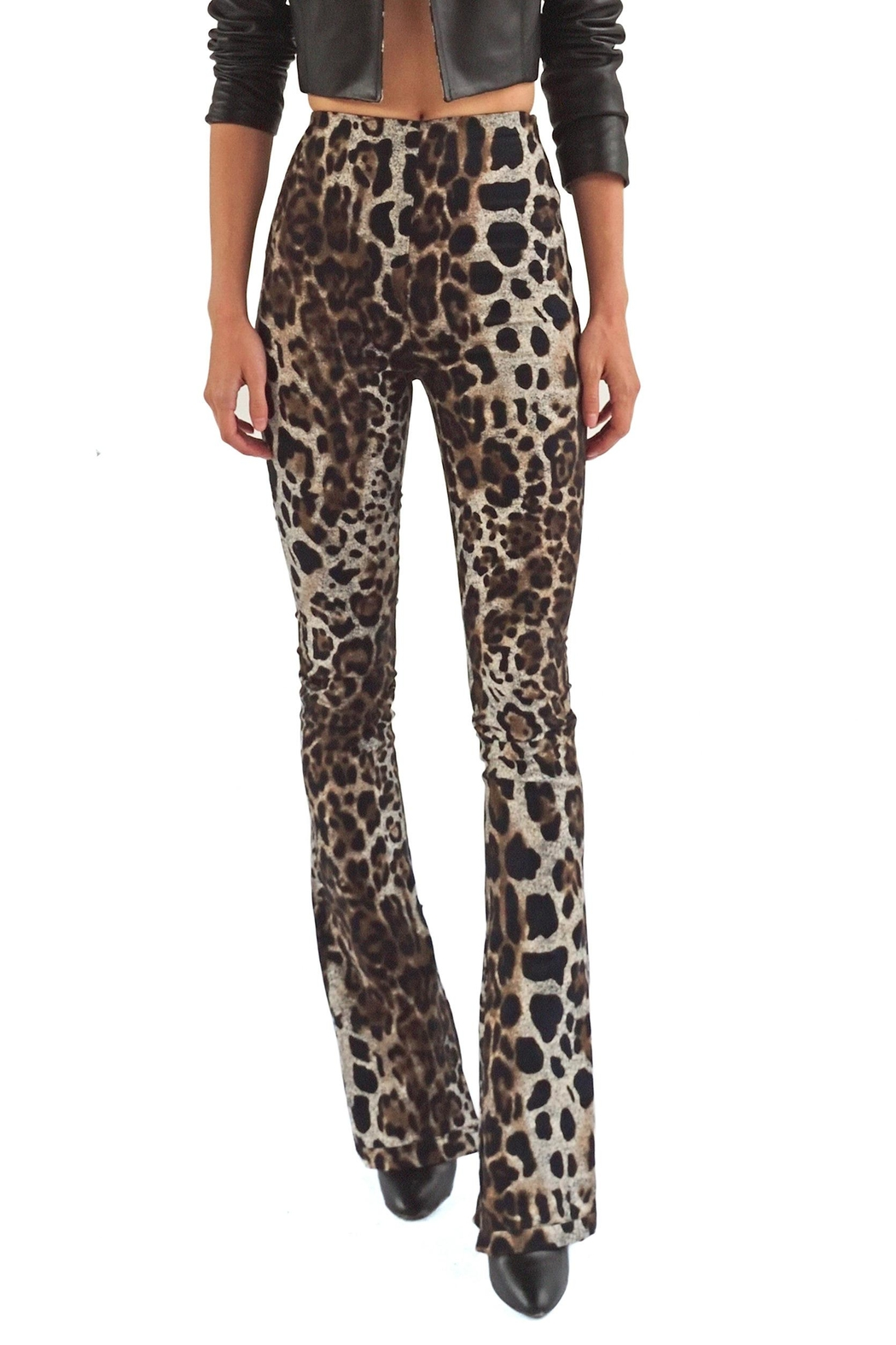 Viesca y Viesca Animal Print Pants - Front Cropped Image