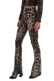 Viesca y Viesca Animal Print Pants - Front full body