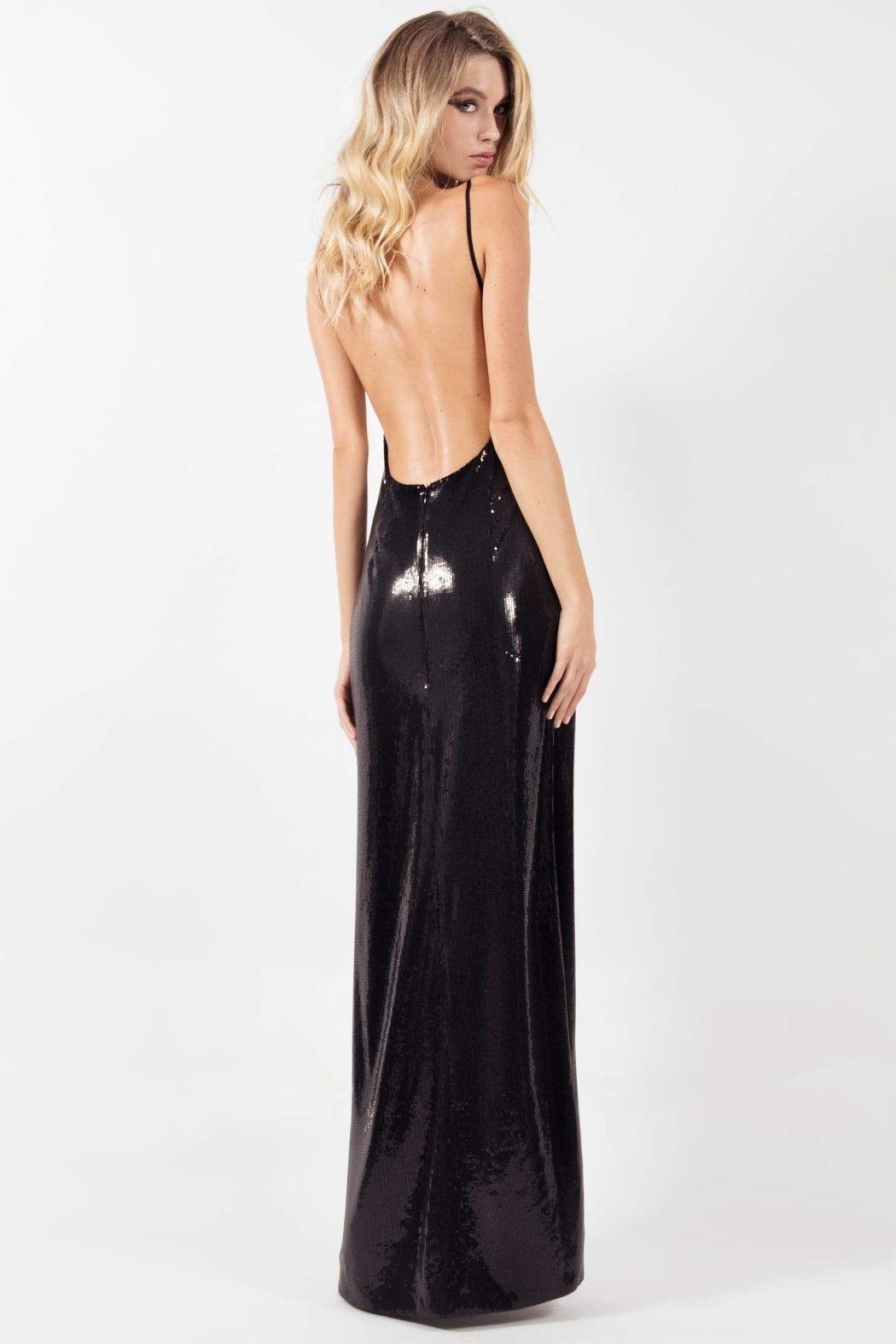 Viesca y Viesca Low Back Maxi Dress - Side Cropped Image