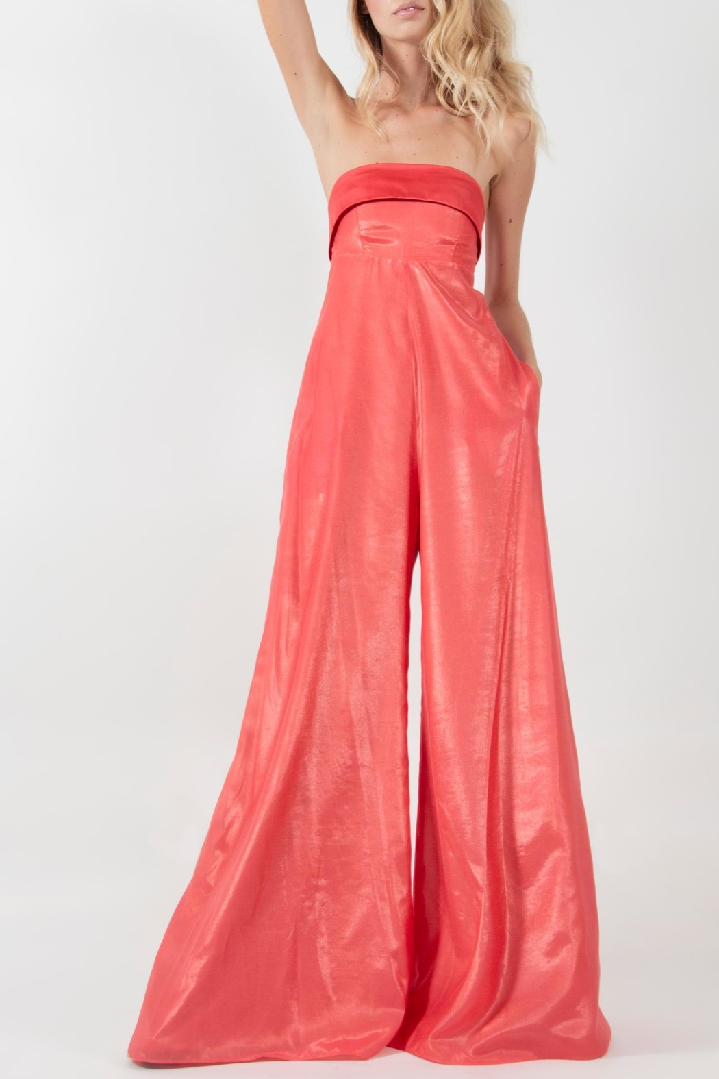 Viesca y Viesca Strapless Jumpsuit - Front Cropped Image