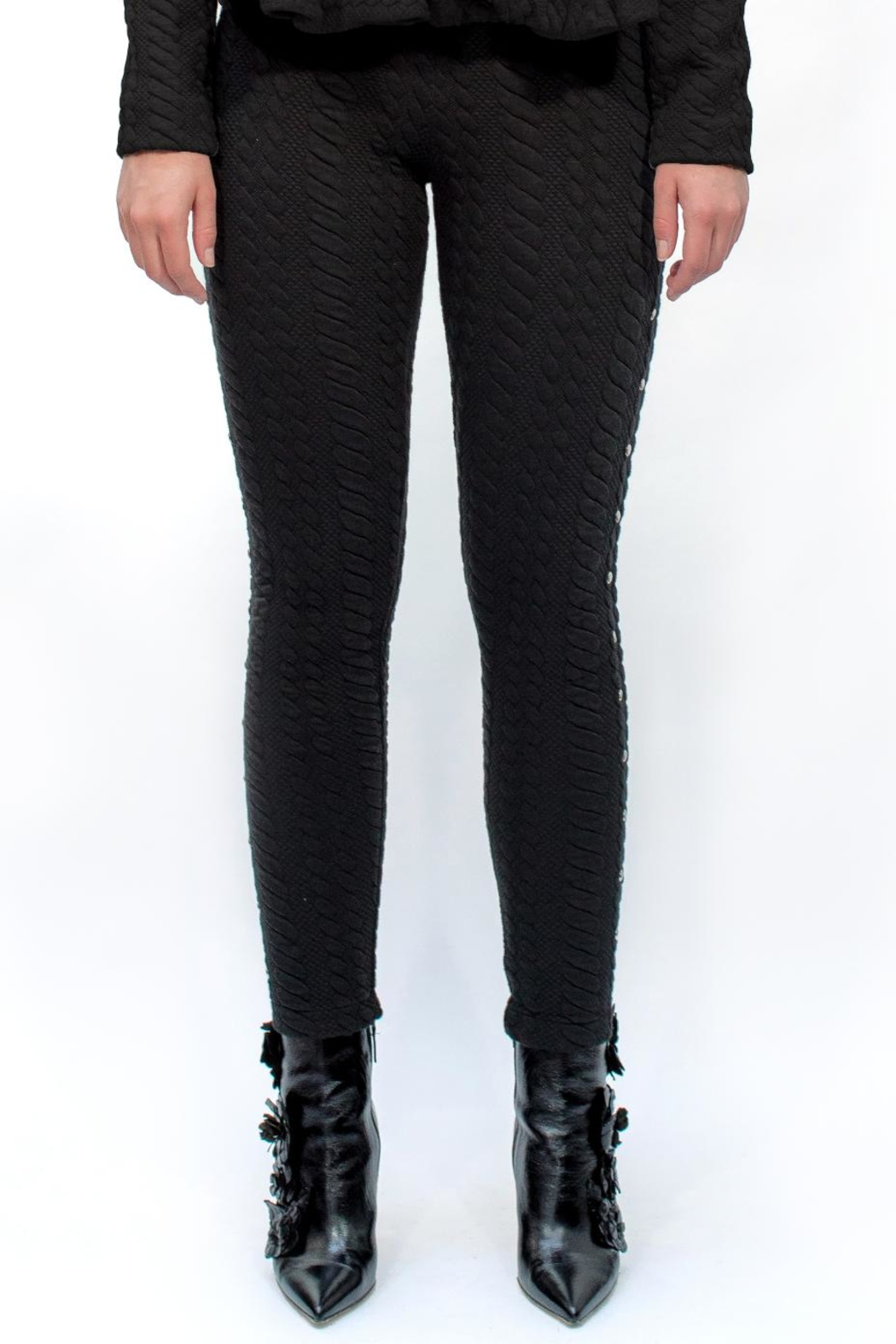 Viesca y Viesca Studded Leggings - Front Full Image