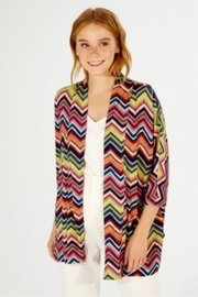 Vilagallo Lines Colorful Jacket - Front cropped