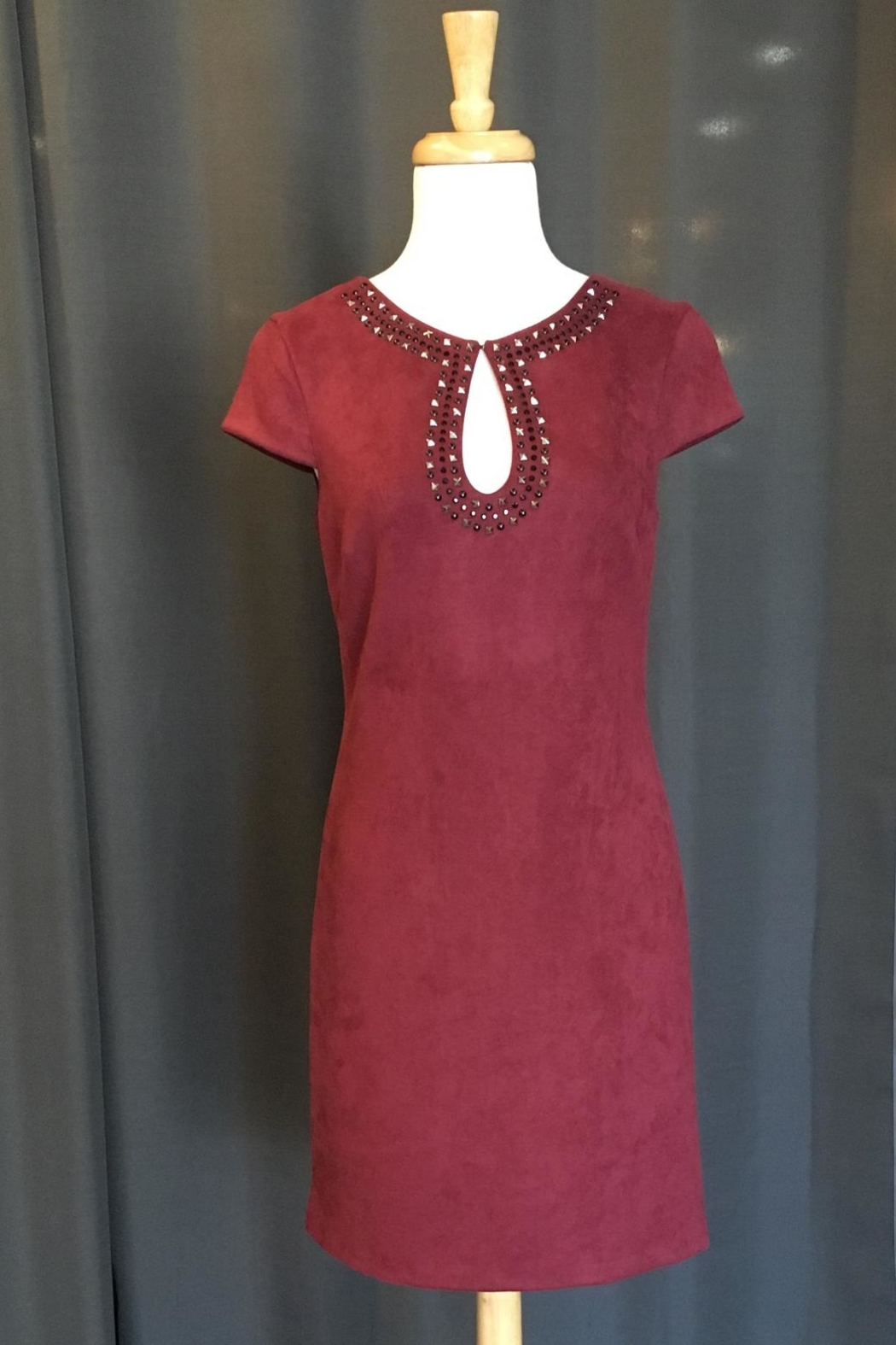 Vince Camuto Suede Dress - Main Image