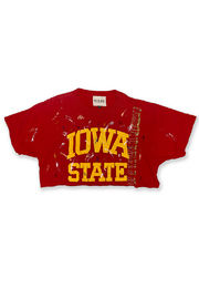 Riley  Vintage Iowa Collegiate Cropped Tee - Front cropped