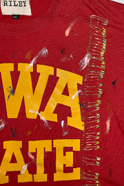 Riley  Vintage Iowa Collegiate Cropped Tee - Side cropped