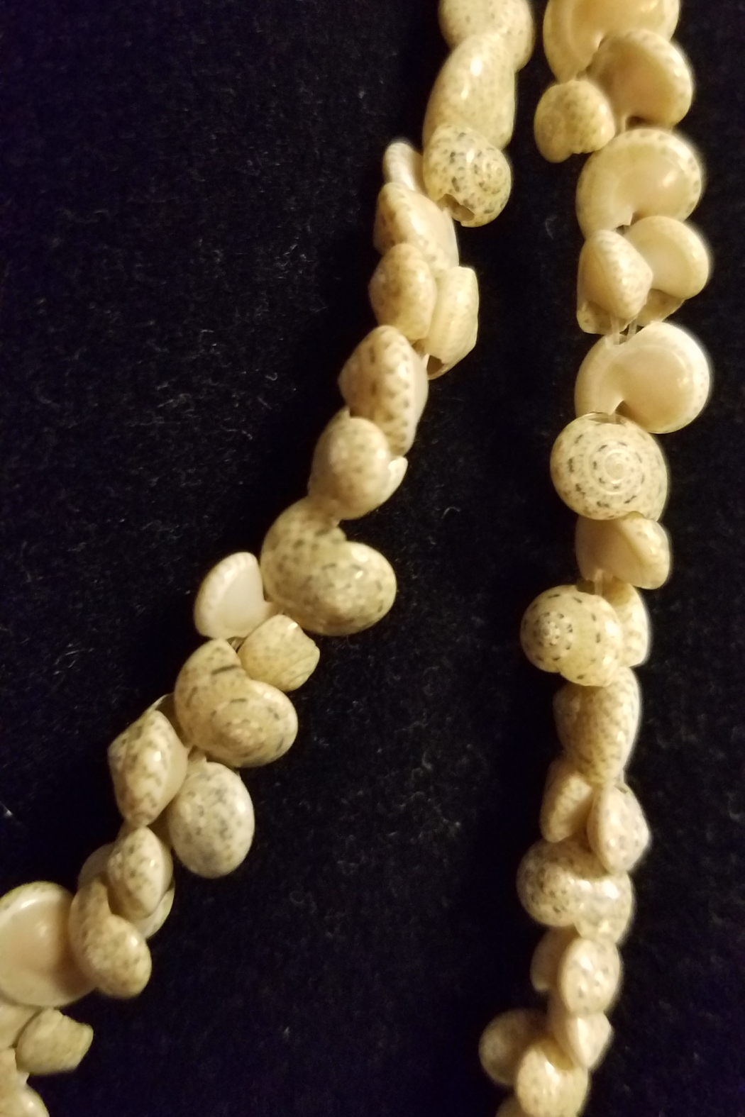 no brand Vintage Shell Necklace From The Phillipines - Main Image