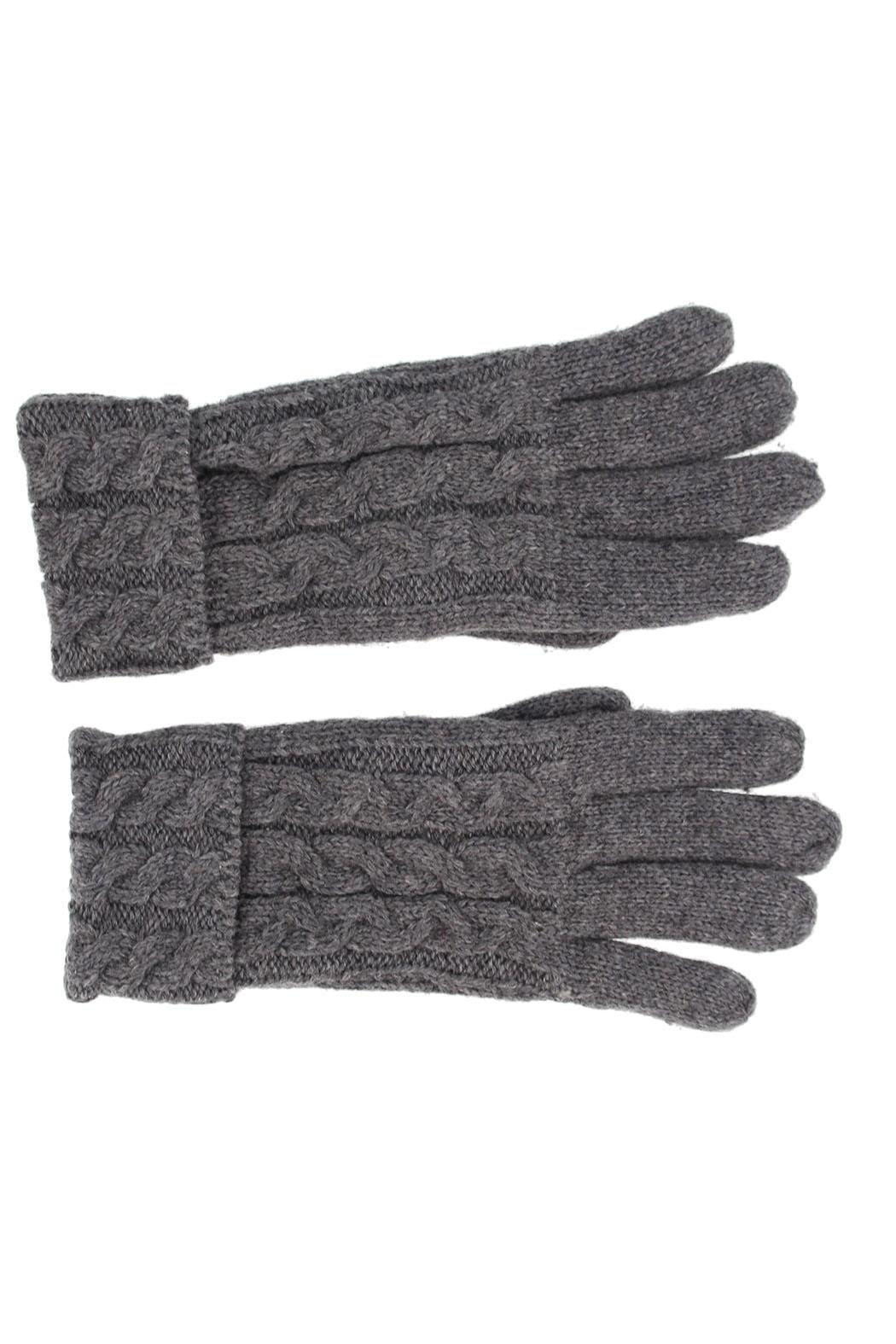 Violet & Virtue Cable Knit Gloves - Front Cropped Image