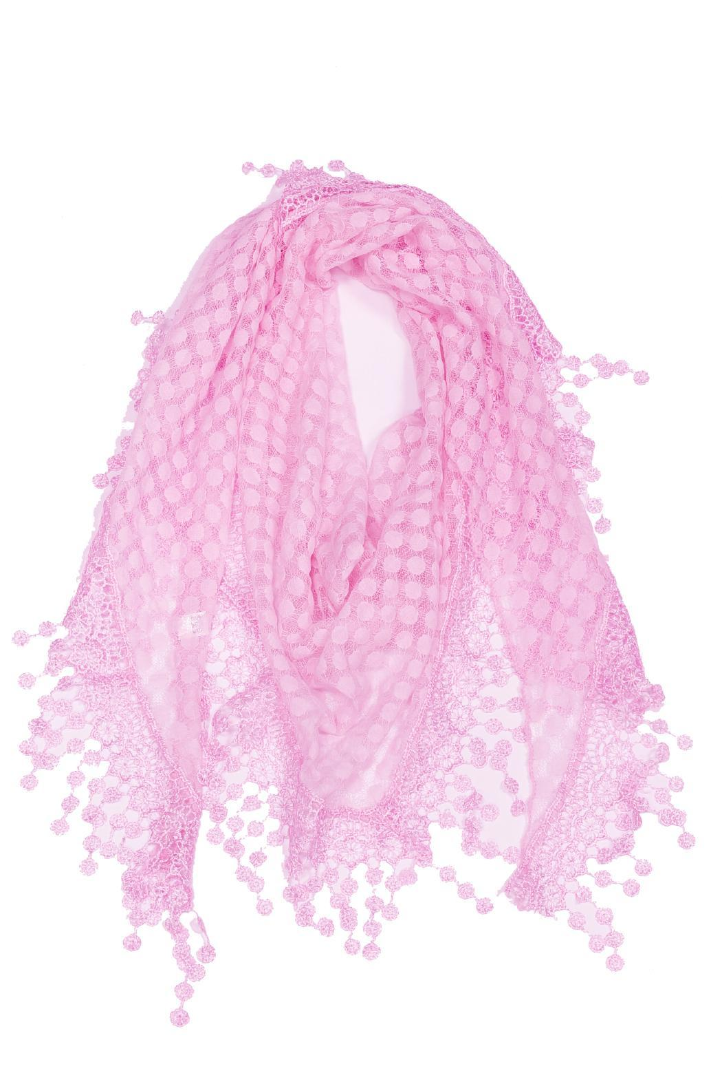Violet Del Mar Embroidered Scarf - Main Image