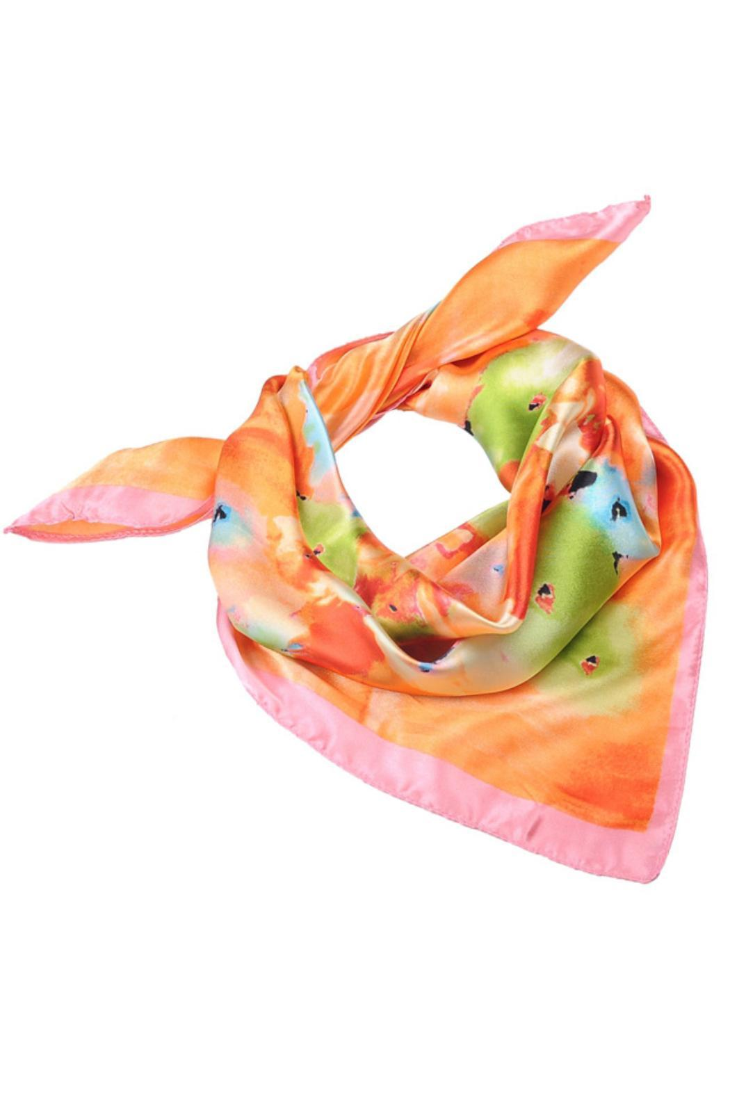Violet Del Mar Multicolor Silk Scarves - Front Full Image