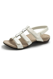 Vionic with Orthaheel Vionic Amber Sandal - Front cropped
