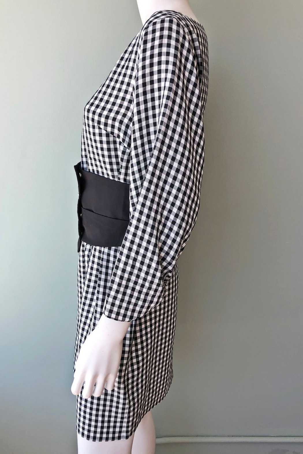 Tibi Viscose Gingham Dress - Side Cropped Image