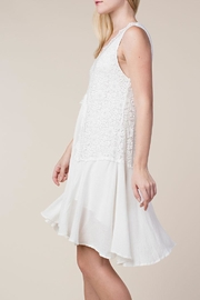 Vocal Apparel Lace Mix-Media Dress - Back cropped