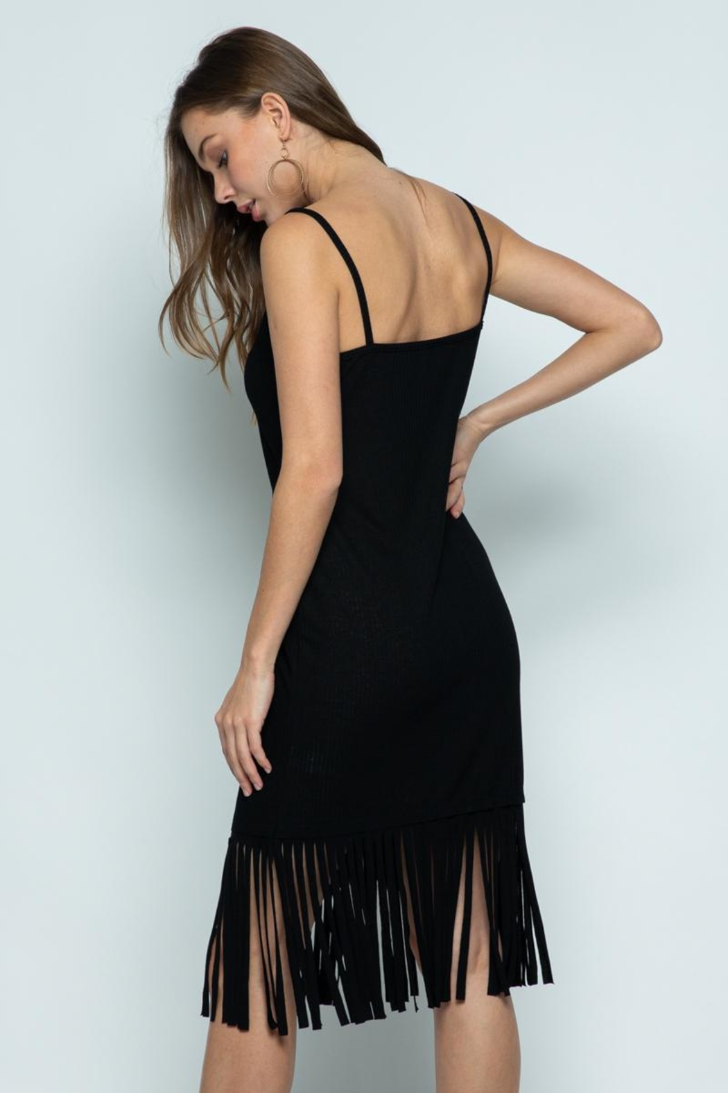 Vocal Apparel Sleeveless Dress With Fringes - Front Full Image
