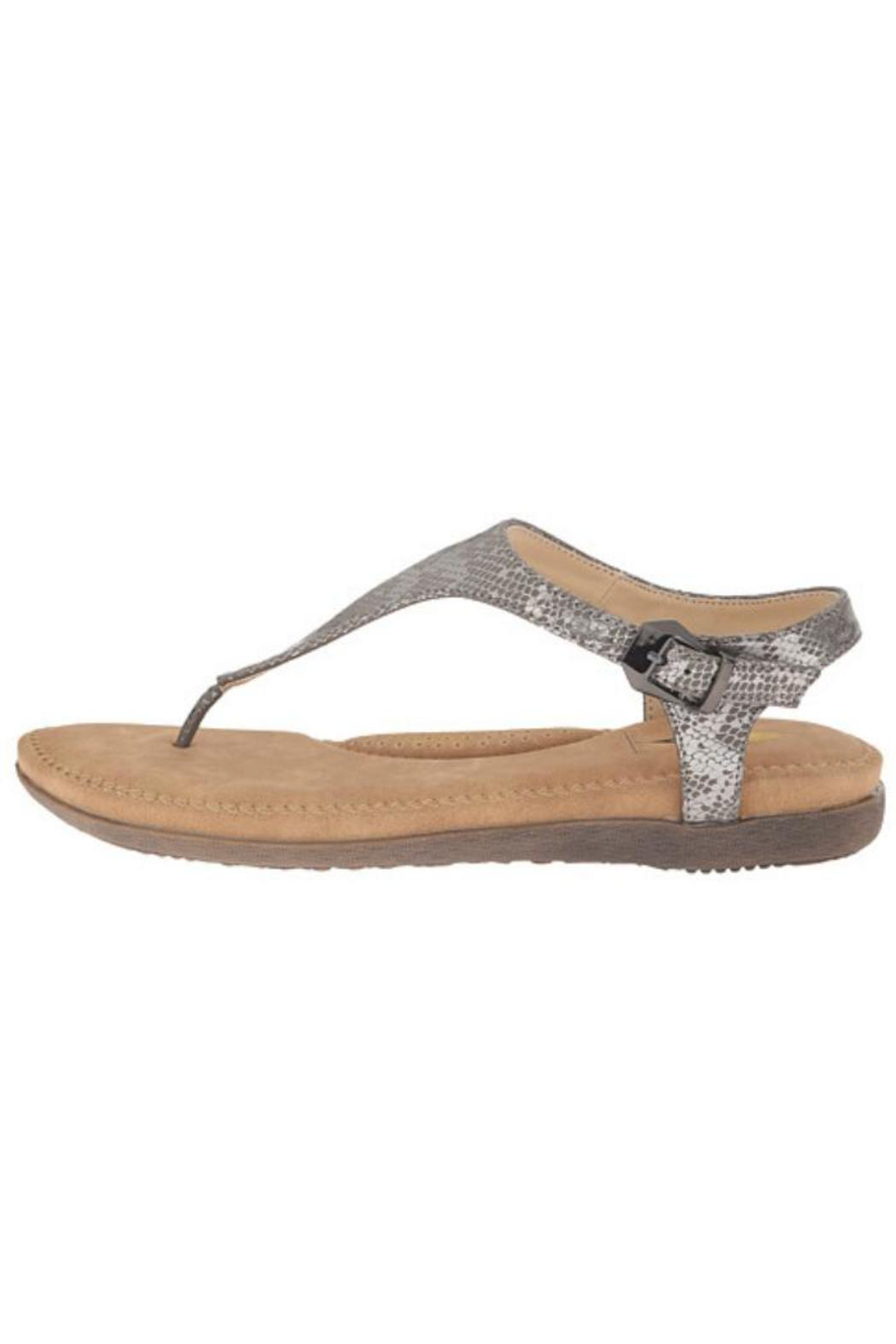 Volatile Reece Sandal From New Orleans By Nola Shoes Accessories