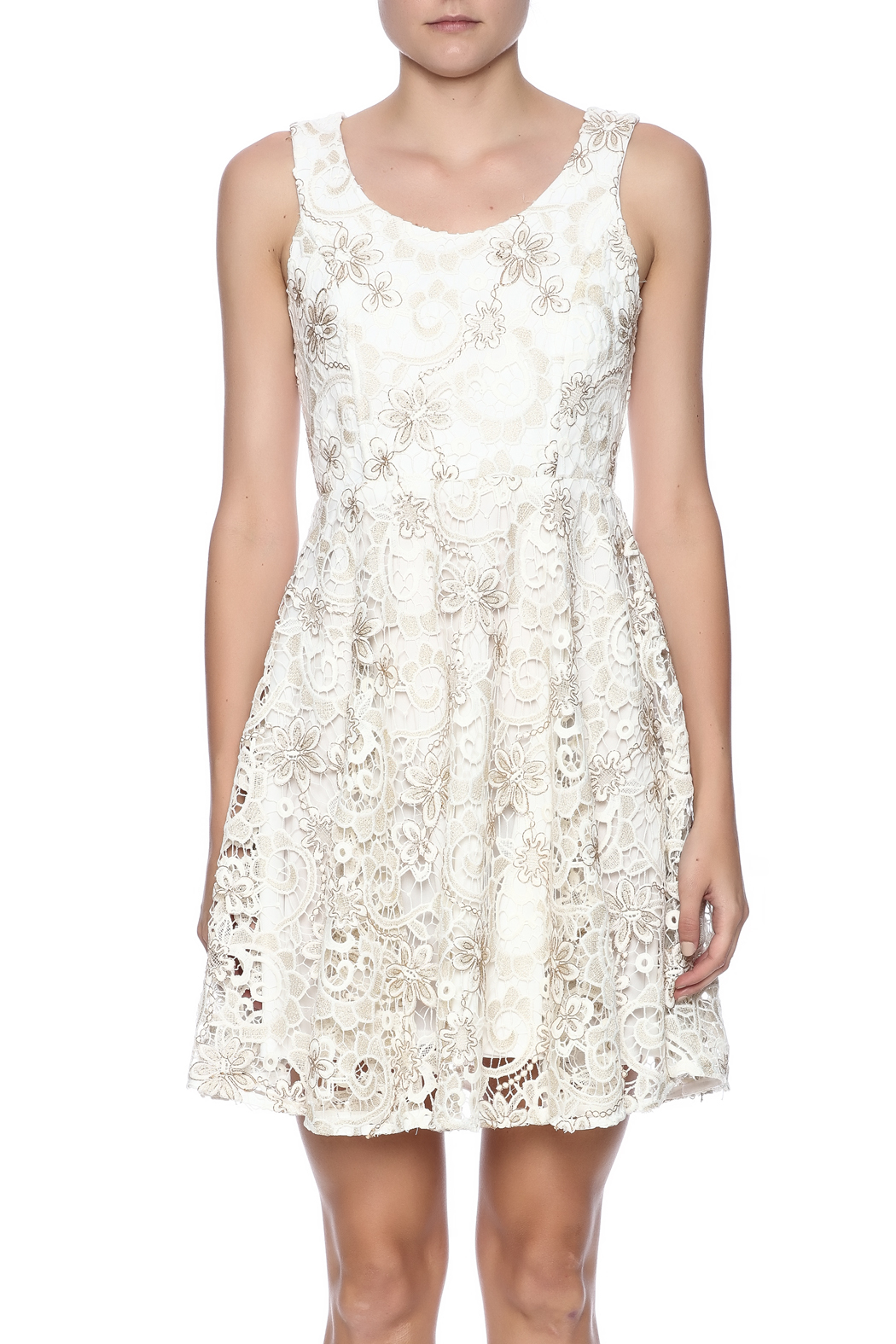 Voom Lace Dress - Side Cropped Image