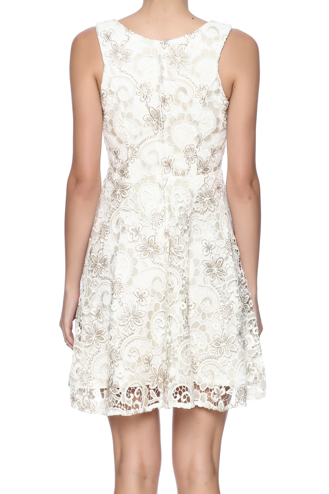 Voom Lace Dress - Back Cropped Image