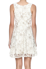 Voom Lace Dress - Back cropped