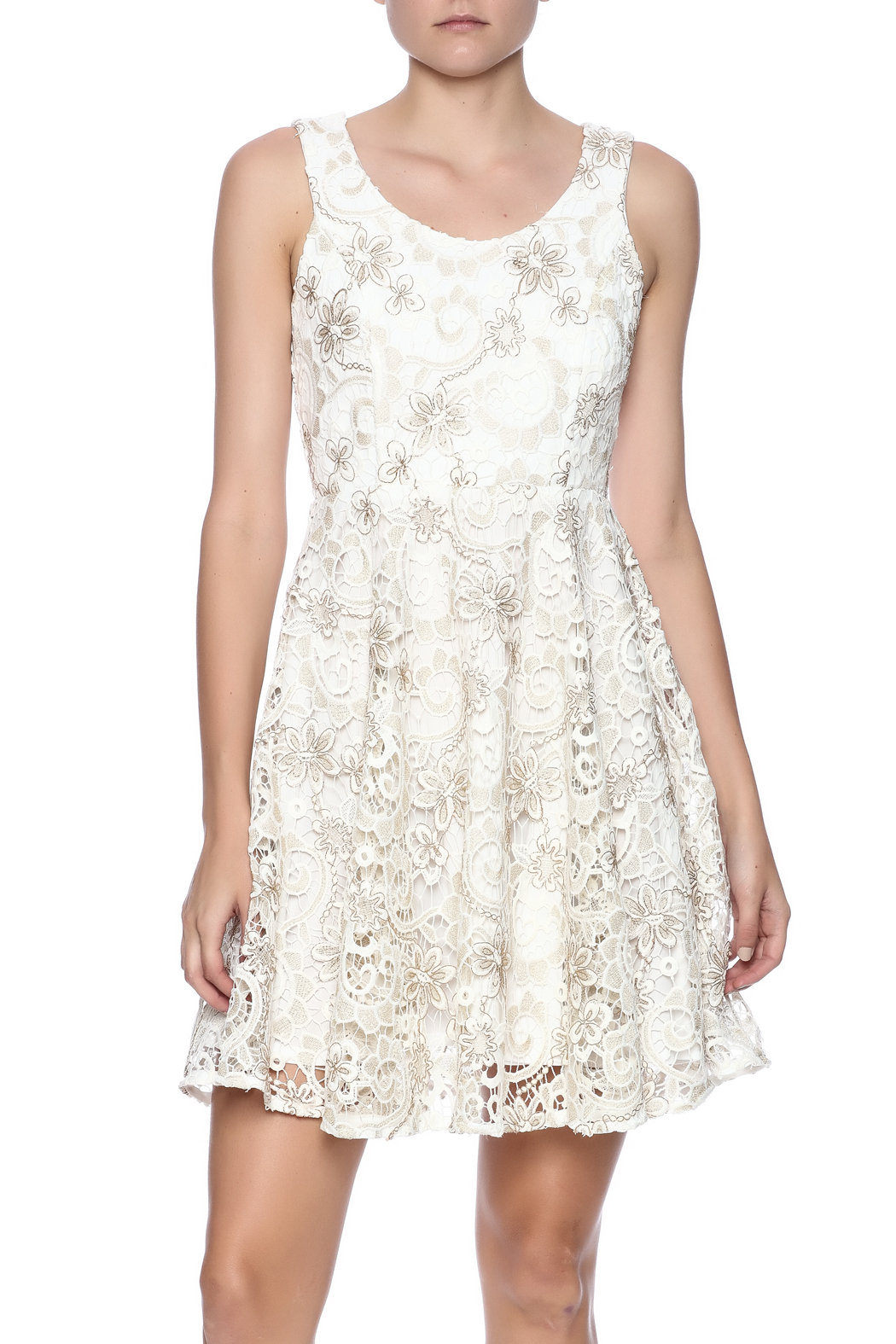 Voom Lace Dress - Main Image