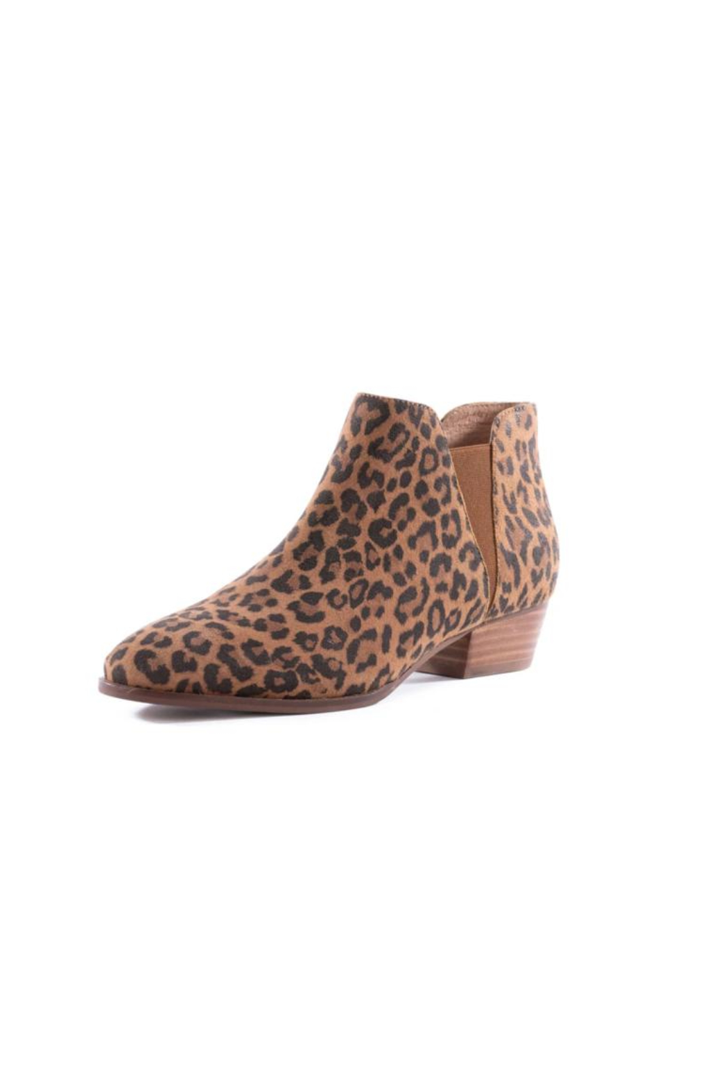 Seychelles Waiting For You Leather Bootie - Front Full Image