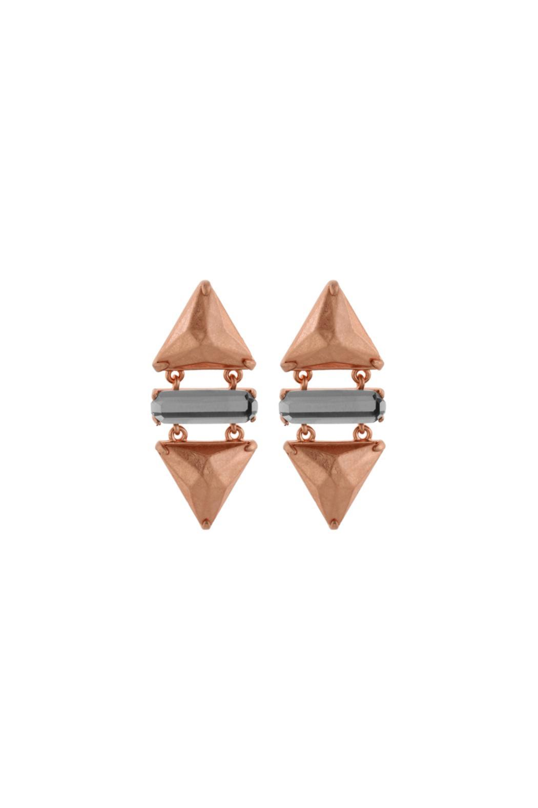 Wanderluster Smoketree Earrings - Front Cropped Image