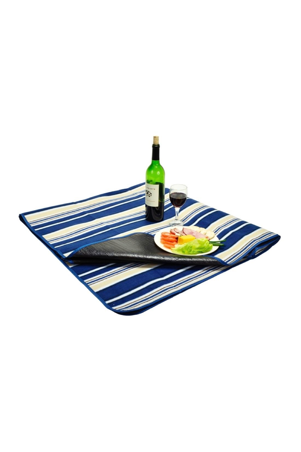 Picnic at Ascot  Waterproof Picnic Blanket - Front Cropped Image