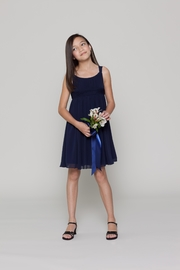 Watters Flower Girl Chiffon Dress - Product Mini Image
