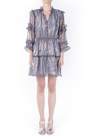 Waverly Grey Danny Dress - Product Mini Image